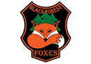 black-forest.foxes_