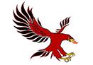 bremen-firebirds