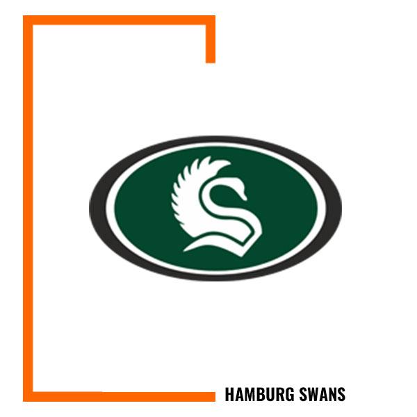 HAMBURG-SWANS-LOGO